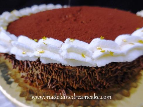 Mousseauchocolat Cake