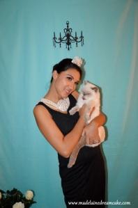 Holly Cat