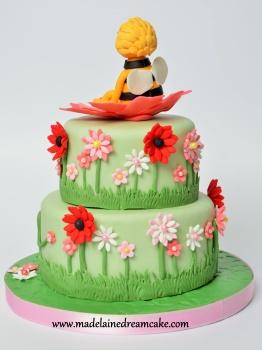 Bine Maya Cake