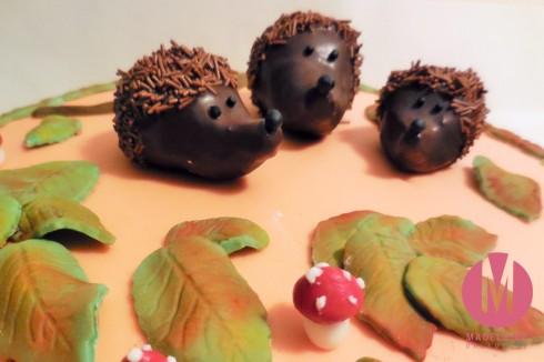 Cake Pops Igel